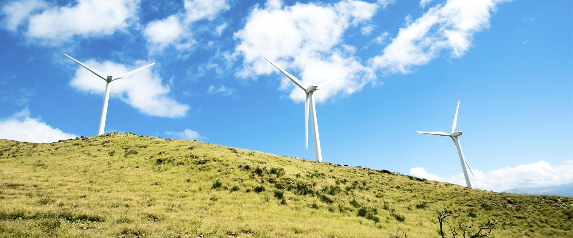 eolica-renovables